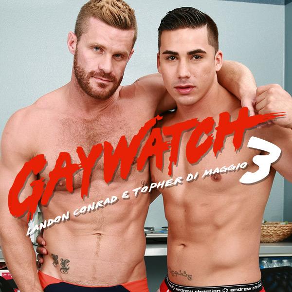 gaywatch-pt3-DMH-feat