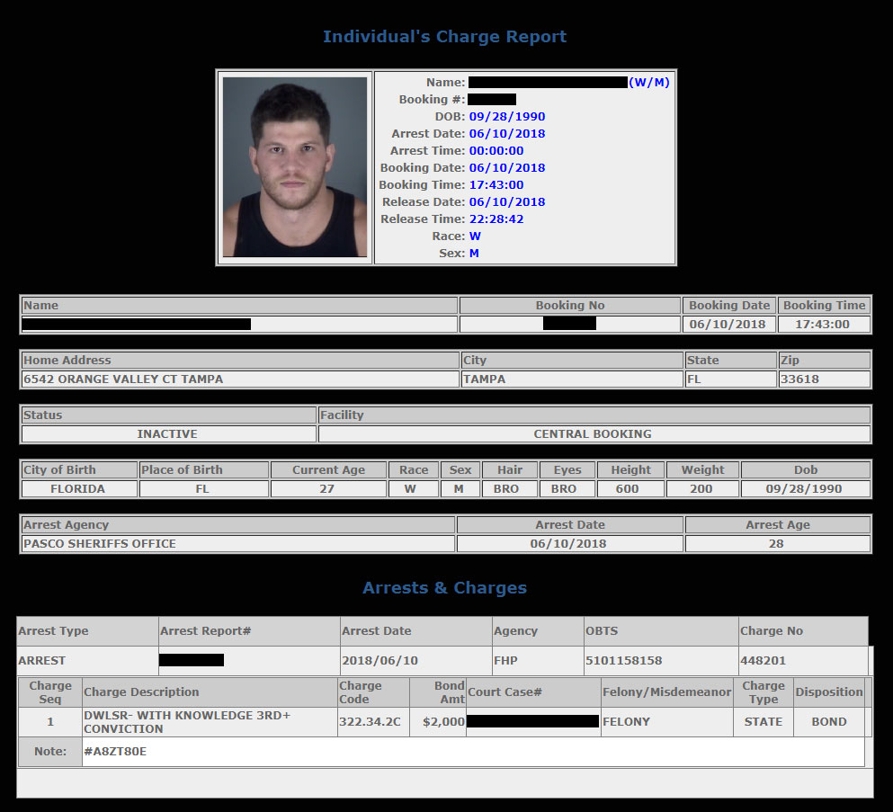 Porn Star Ashton McKay's 3rd DUI Considered Felony in the State of Florida