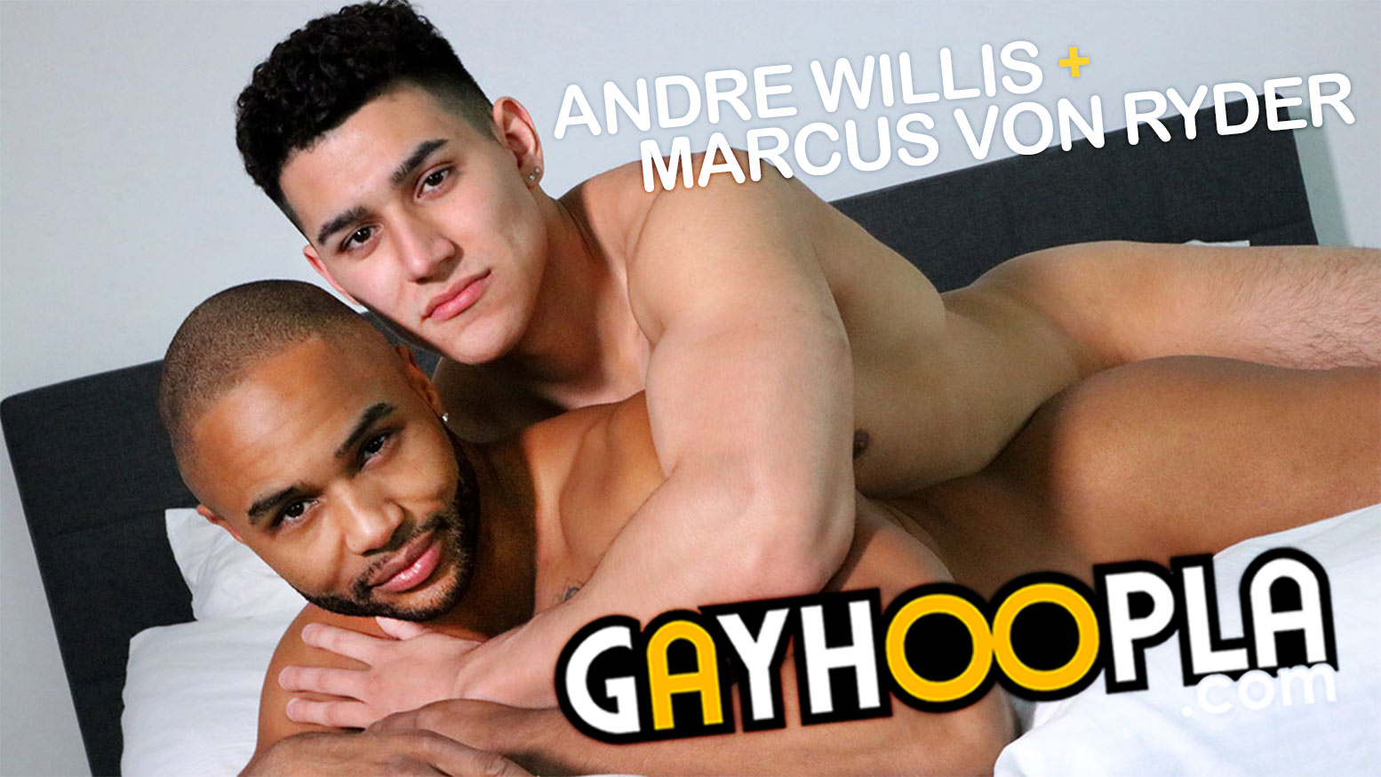Andre Temple Porn Summerfield gayhoopla: andre willis piledrives marcus von ryder - waybig