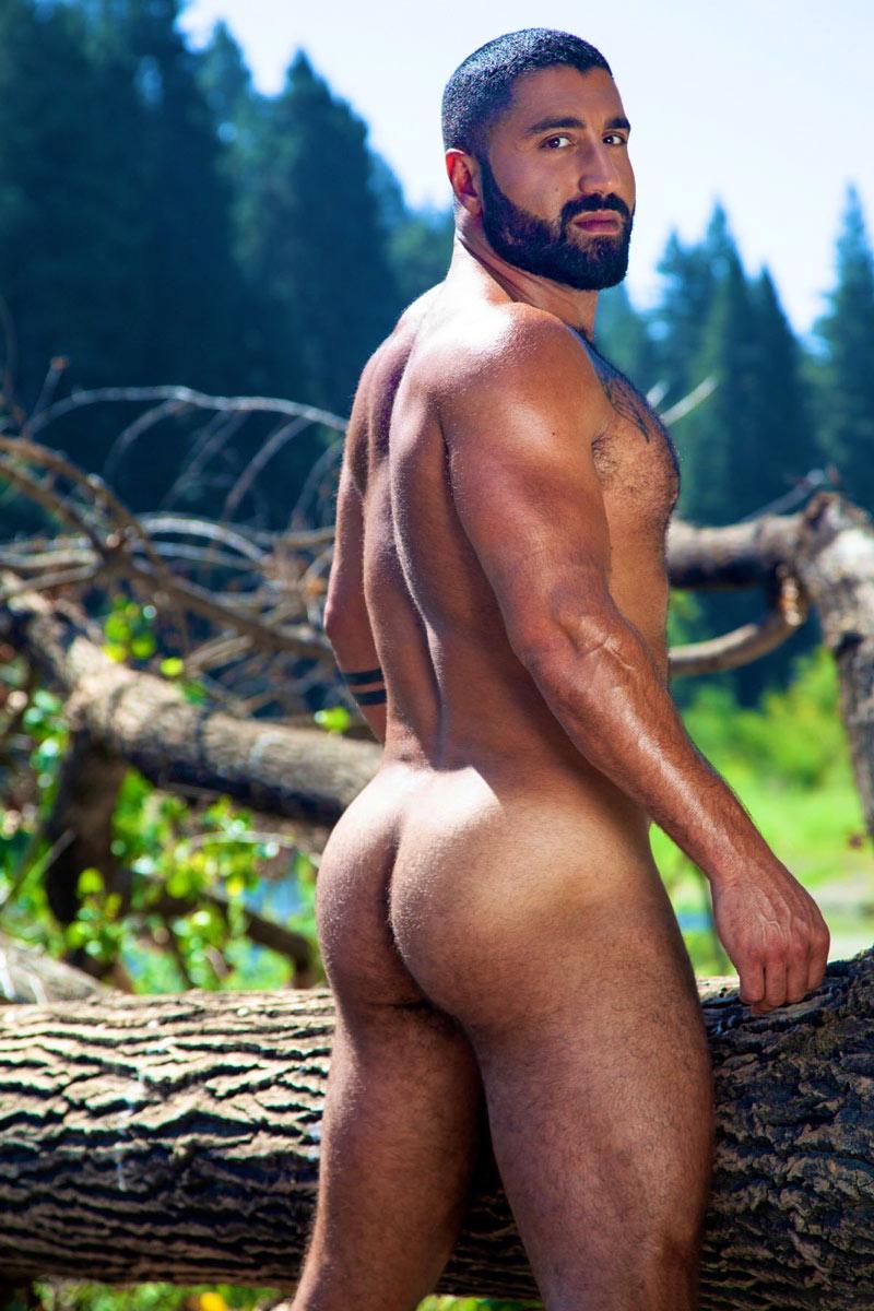 Actor Porno Sharok sharok | gay porn star database at waybig