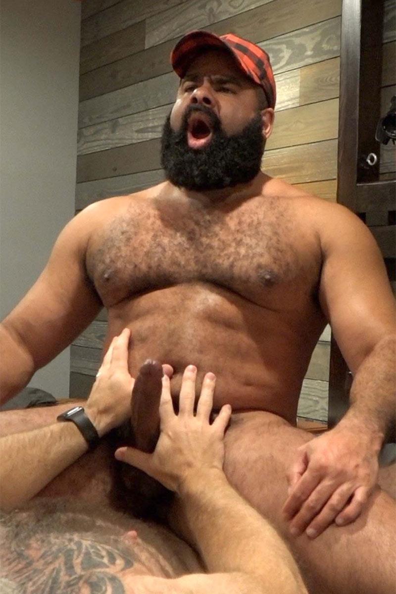 Com Bear Porn